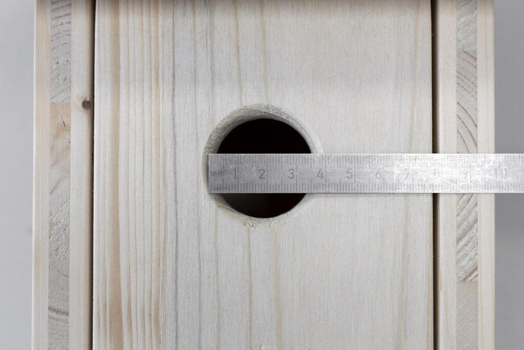 Öffnungen mit einem Durchmesser von 30 bis 34 mm werden von den meisten Kleinvögeln in Deutschland bevorzugt.